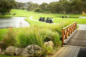 SG-GolfDay-28.11.14-11